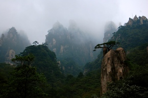 Yellow Mountain / Huangshan