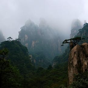Yellow Mountain /Huangshan
